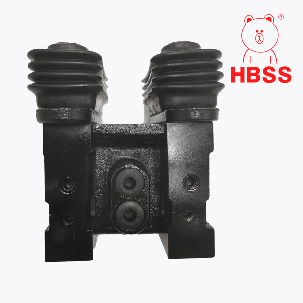 Double foot valve assembly